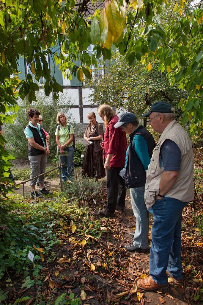 Wildkräuter- und Naturheilpflanzen-Führung mit dem Naturkoch Andreas Haner
